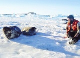 Привет из Антарктиды - чебоксарским школьникам
