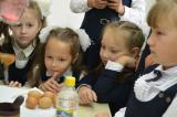 В День знаний школьники познавали гранит науки в КВЦ «Радуга»